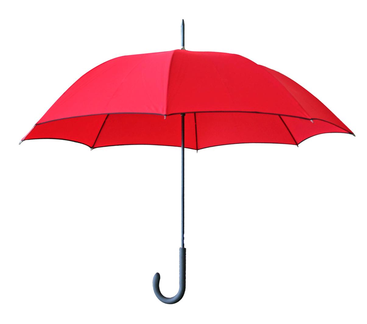 Parapluie Paris Rive Gauche - 13-1025-20