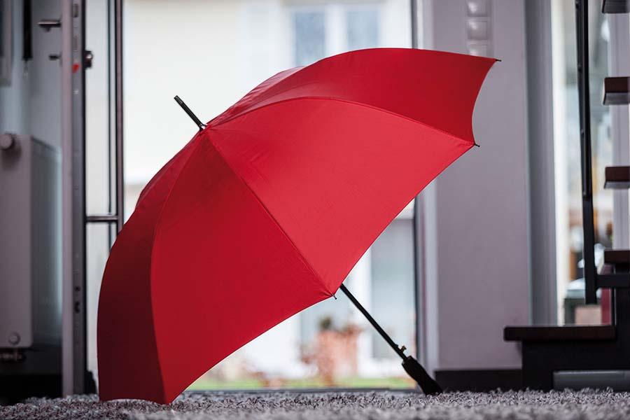 Parapluie Passat - 14-1269-8
