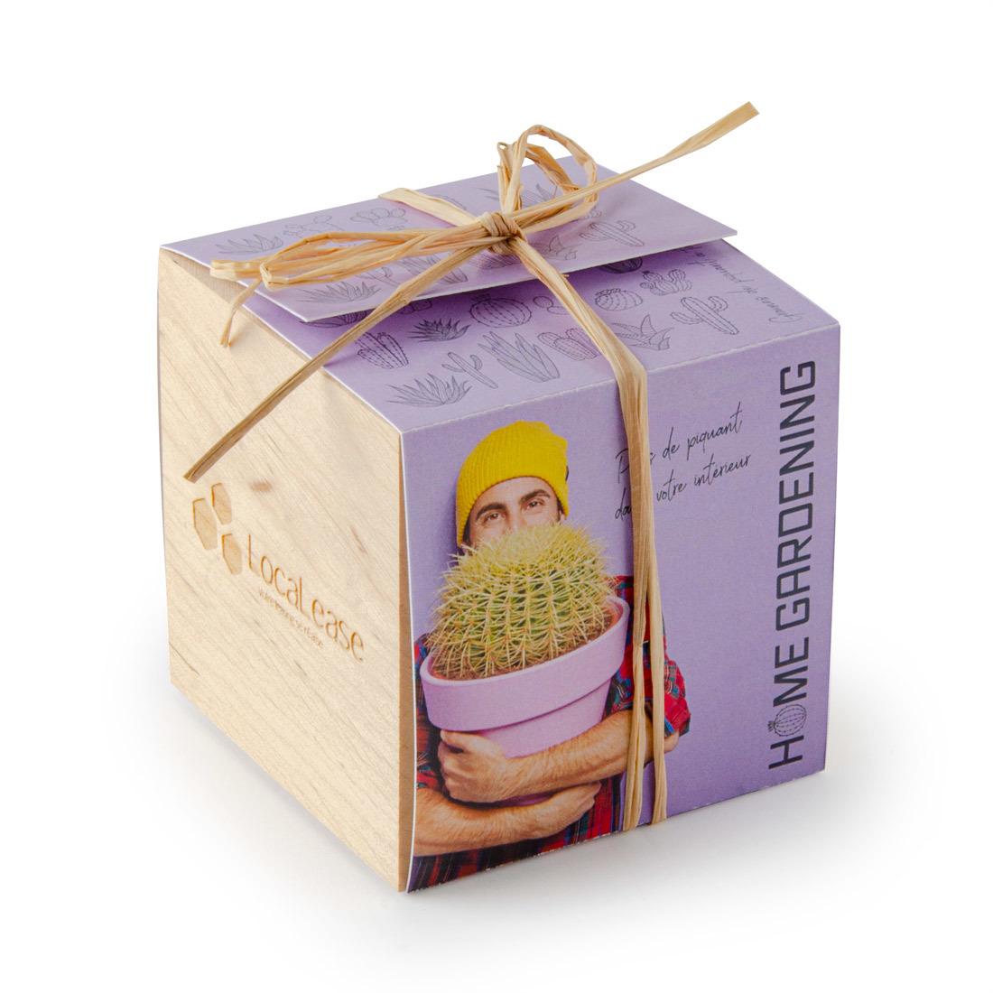 Kit de plantation cube cadeau en bois
