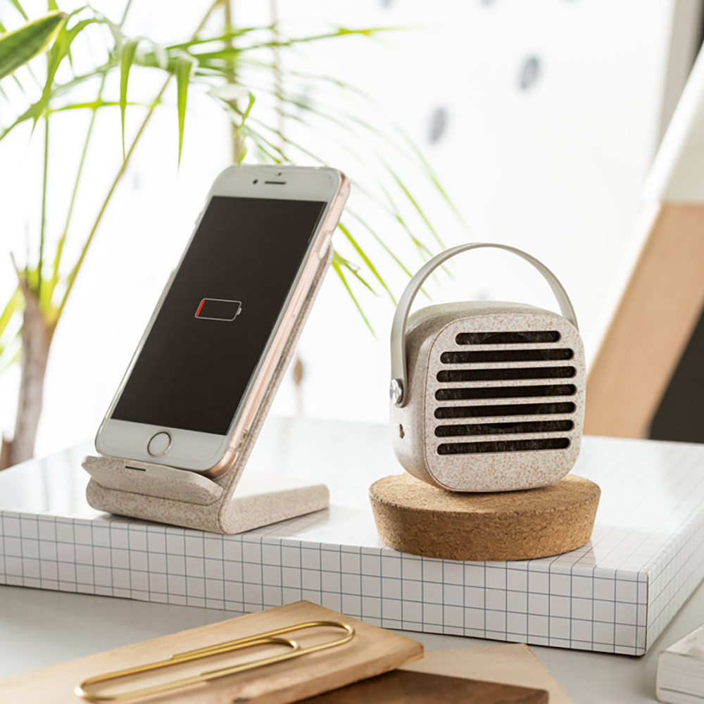 Haut-parleur portable Pyon