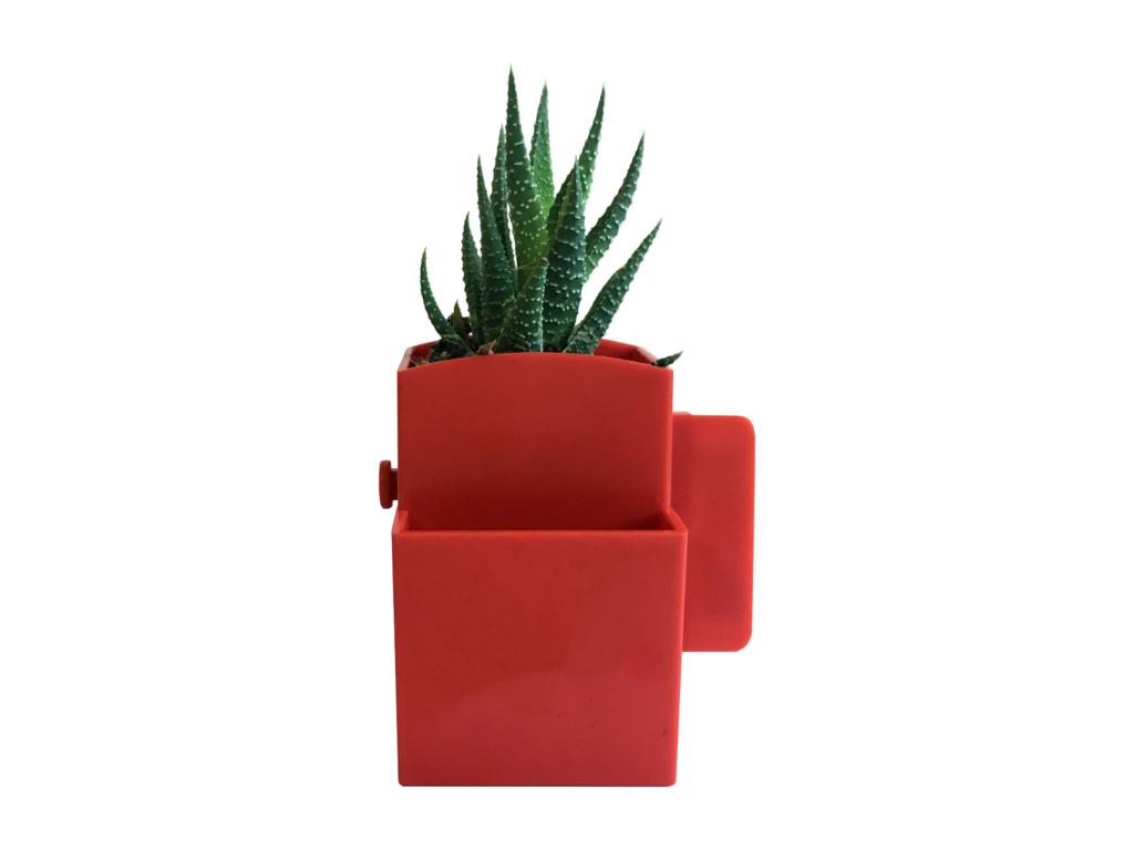 La végétal-box