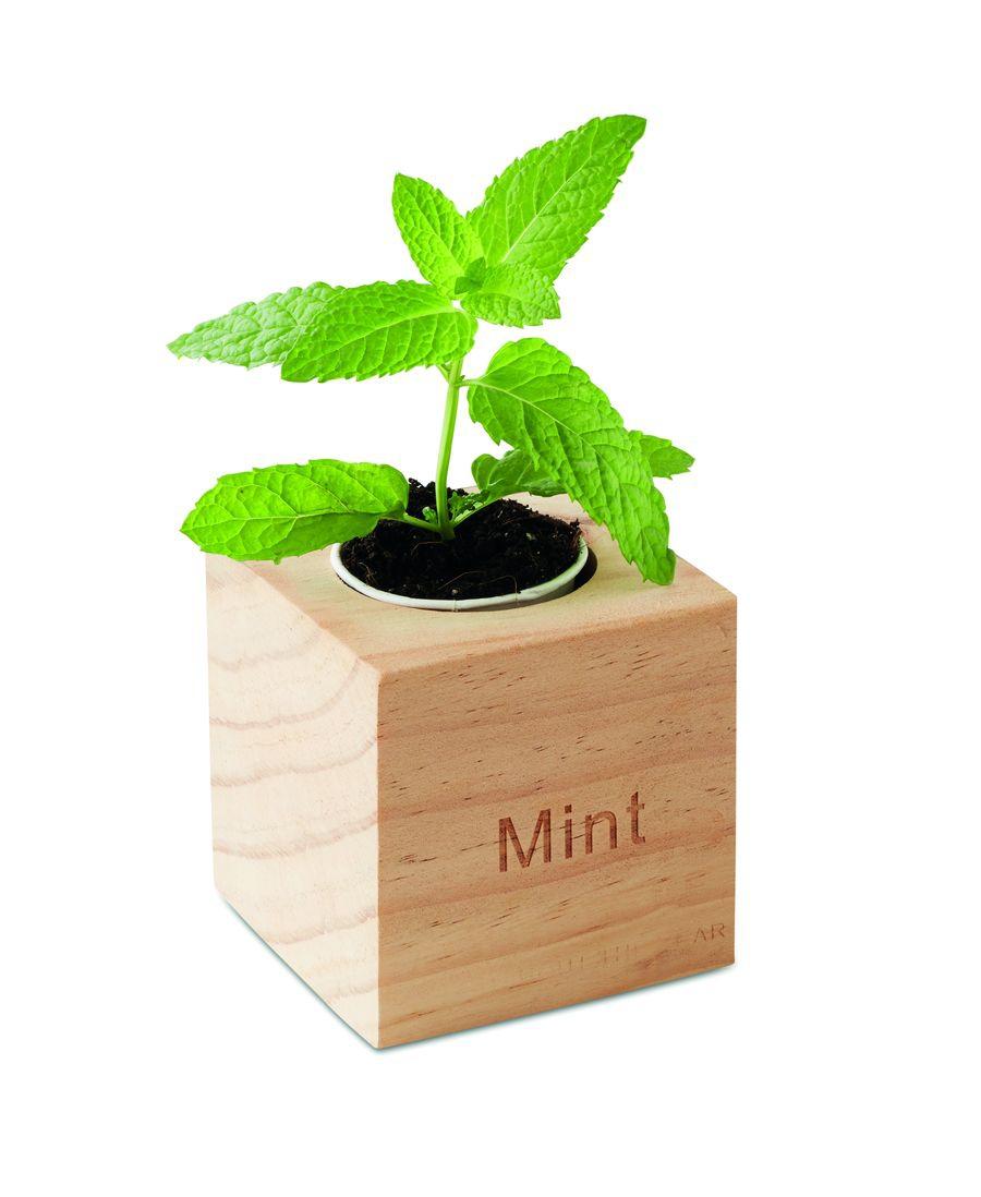 Pot en bois avec graine