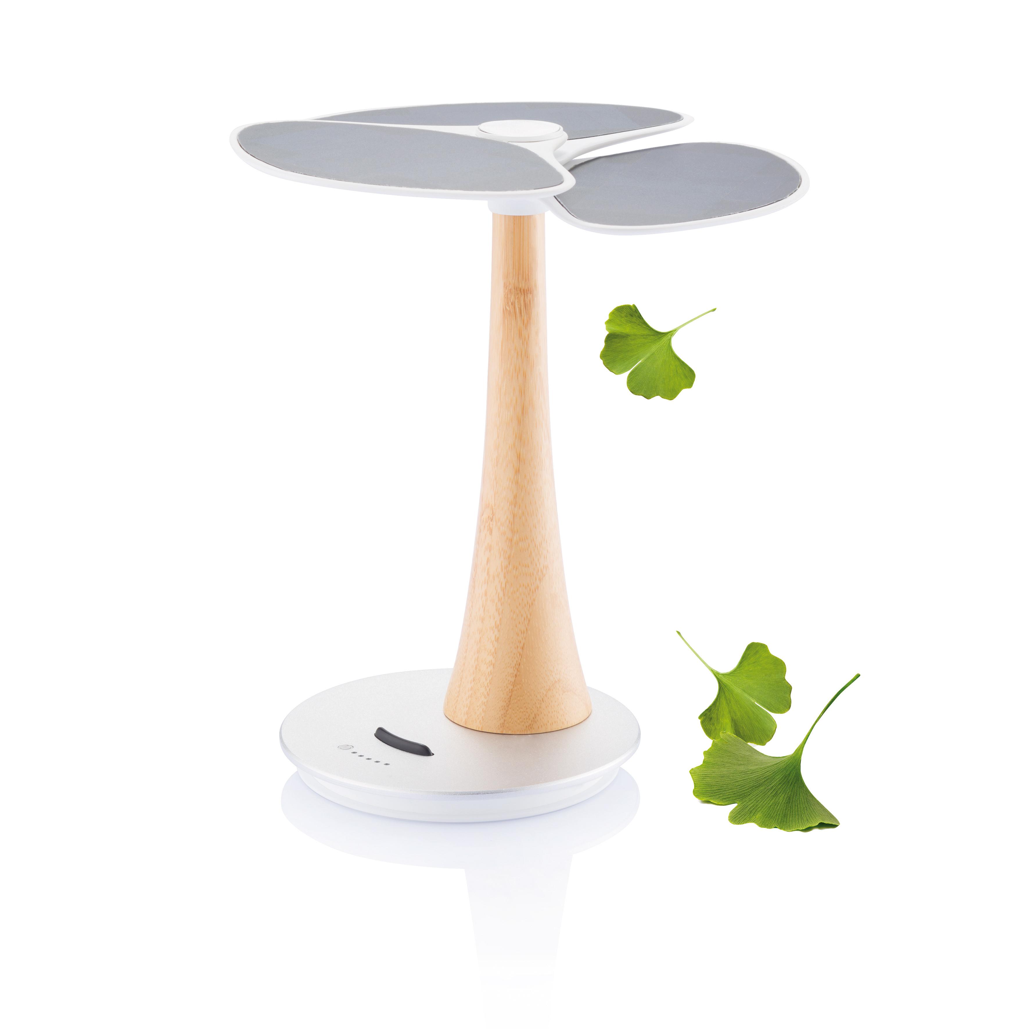 Arbre solaire Ginkgo