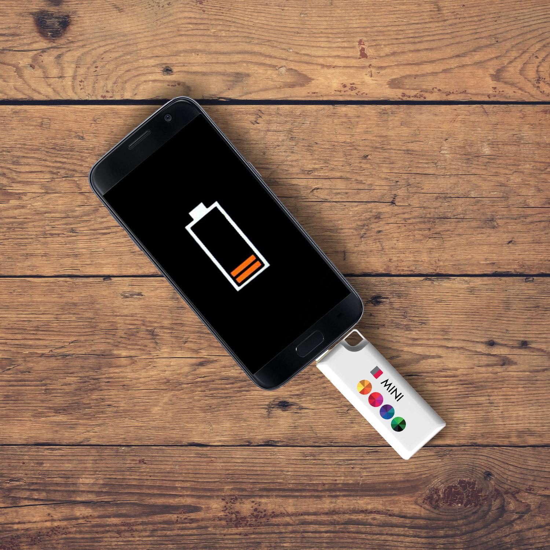 Petite batterie 700 mAh