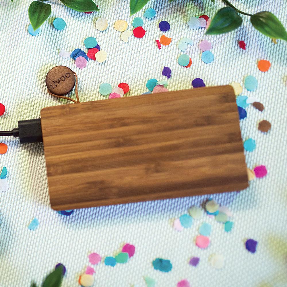 Batterie de secours en bambou